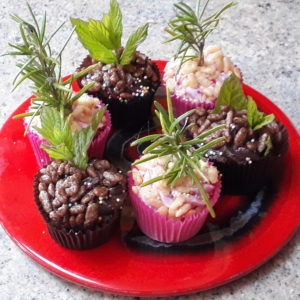 Muffins-for-meso